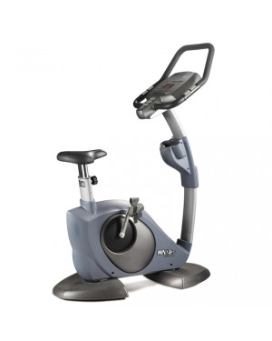 8318 LB Upright Bike (WNQ)