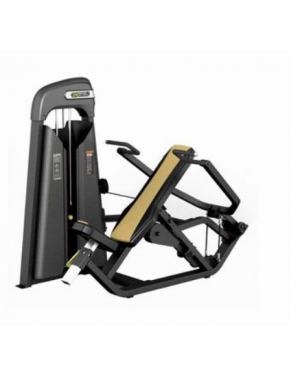 E3006 Shoulder Press (DHZ)
